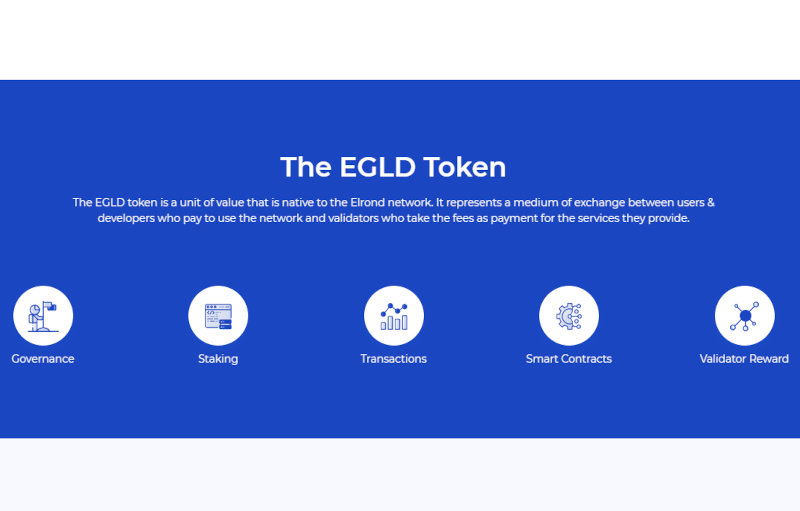 An outline of how the Elrond blockchain platform works.